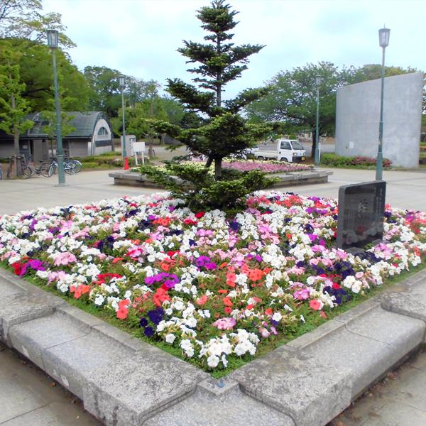 湘南台公園